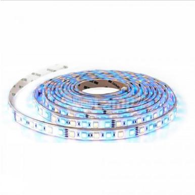 Tαινία LED DC:12V SMD5050 10.8W/m IP20 RGB+Λευκό